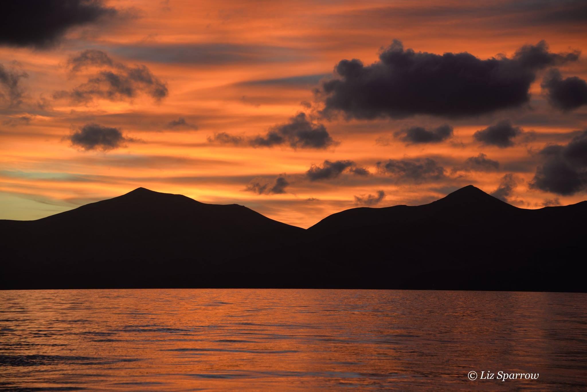 Sunset Sea Safari Boat Tour