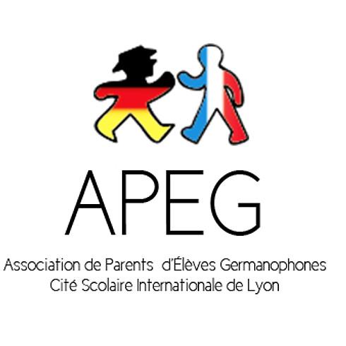Informationschat (video) mit der APEG
