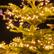 Joyeux Noël - Weihnachtsgrüße von der APEG