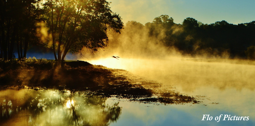 Misty Morning on Lake Wylie