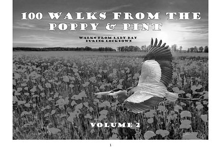 100 Walks from The Poppy and Pint Volume