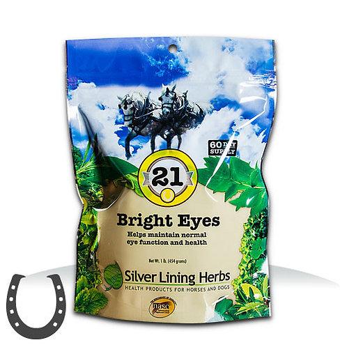 Silver Lining 21 Bright Eyes