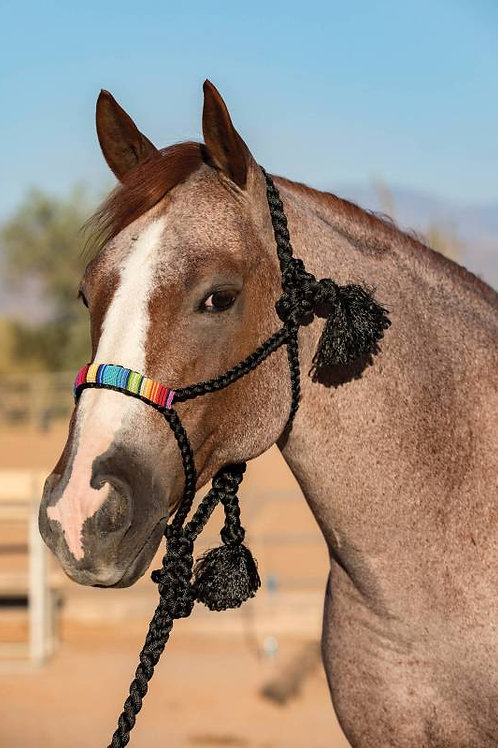 ProfChoice Beaded Nose Cowboy Braided Halter w/10'Lead - Serape
