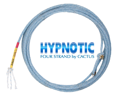Hypnotic (Head) - Cactus Rope
