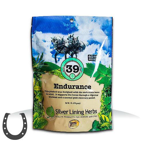 Silver Lining 39 Endurance
