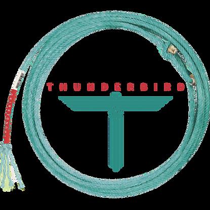 Thunderbird_4_4f8fe7a0-944c-4226-92e9-1eb39600365e_1024x.png