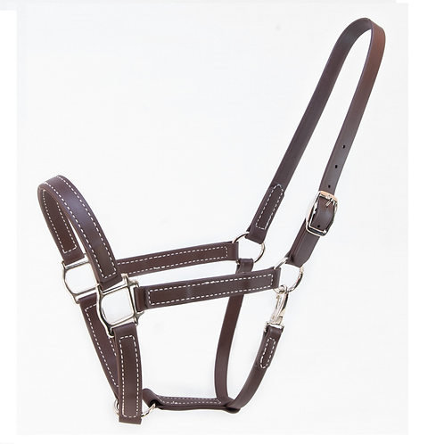 TN Miniature Pony Biothane Halter - Brown