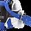 Thumbnail: Cool Wrap Horn Wrap - Classic Equine
