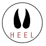 heel rope icon.png