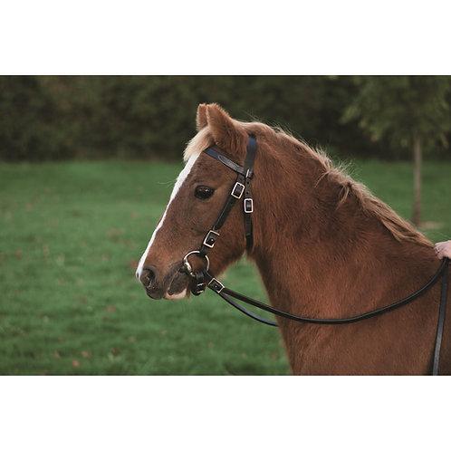 Pony Headstall & Splint Reins Package