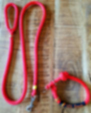 Halsband_riem.jpg