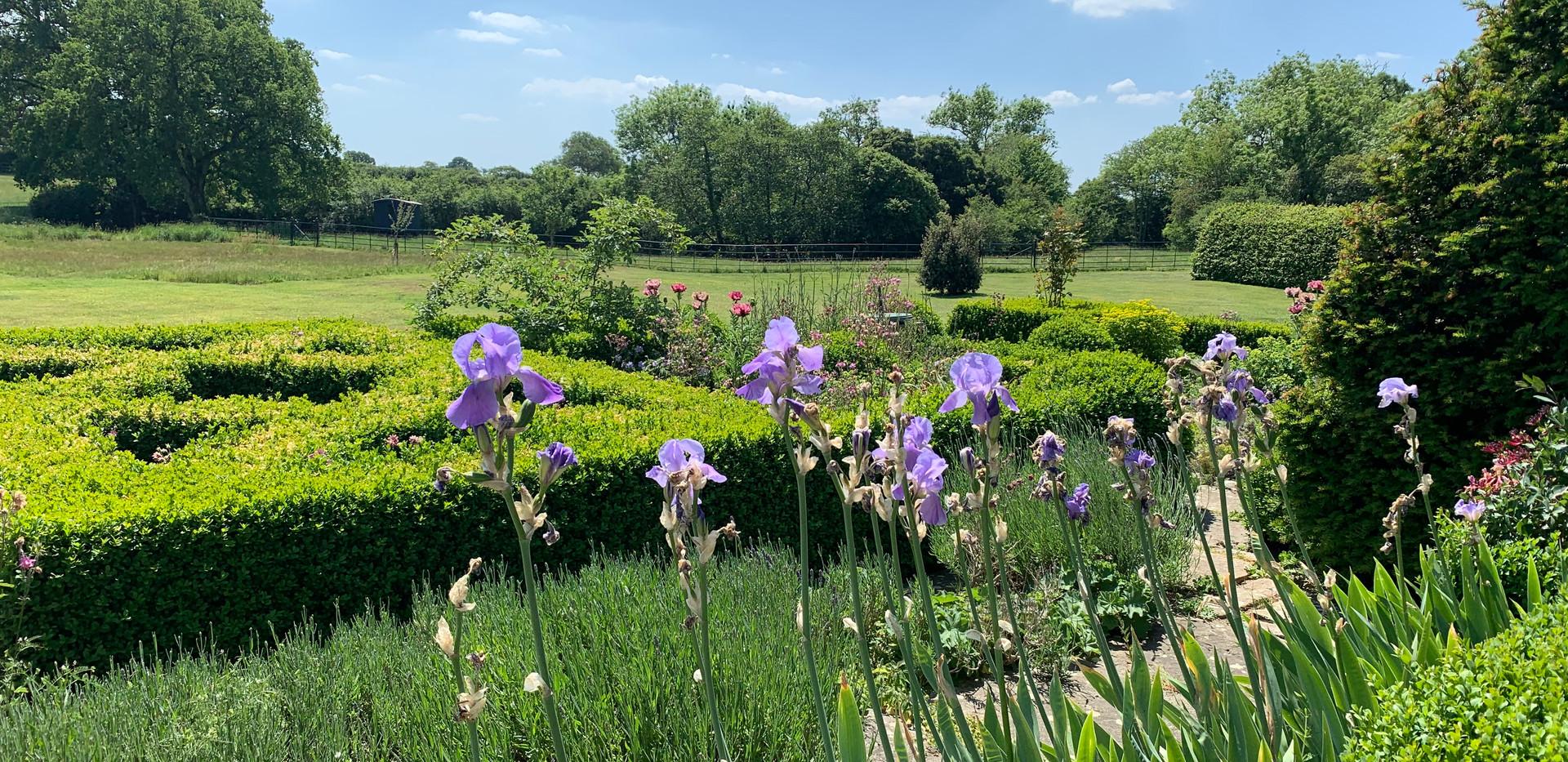 June in the farmhouse garden