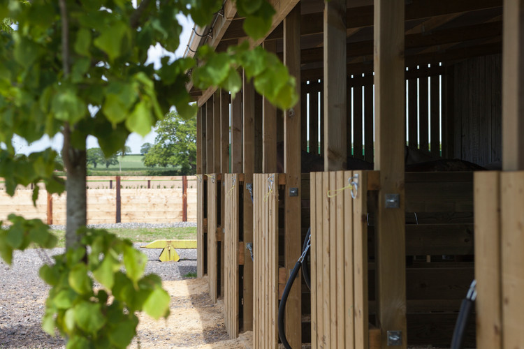 Summer day stables
