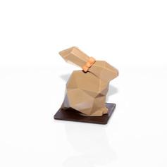 lapin facette sur plaque et en boîte 2021