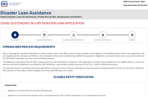 Disaster Loan Assistance Online Application Screenshot