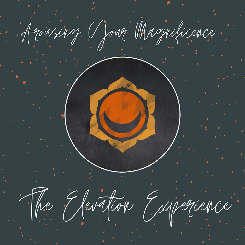 Arousing Your Magnificence ~ The Elevation Experience