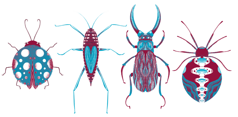 Insects-FemkeKoppe.PNG