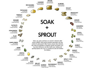 The Art of Soaking & Sprouting