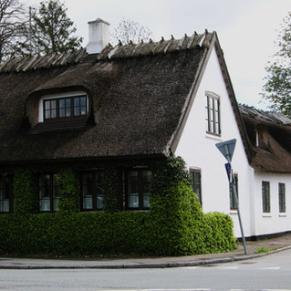 Ivy on Thatched in Græsted.jpg
