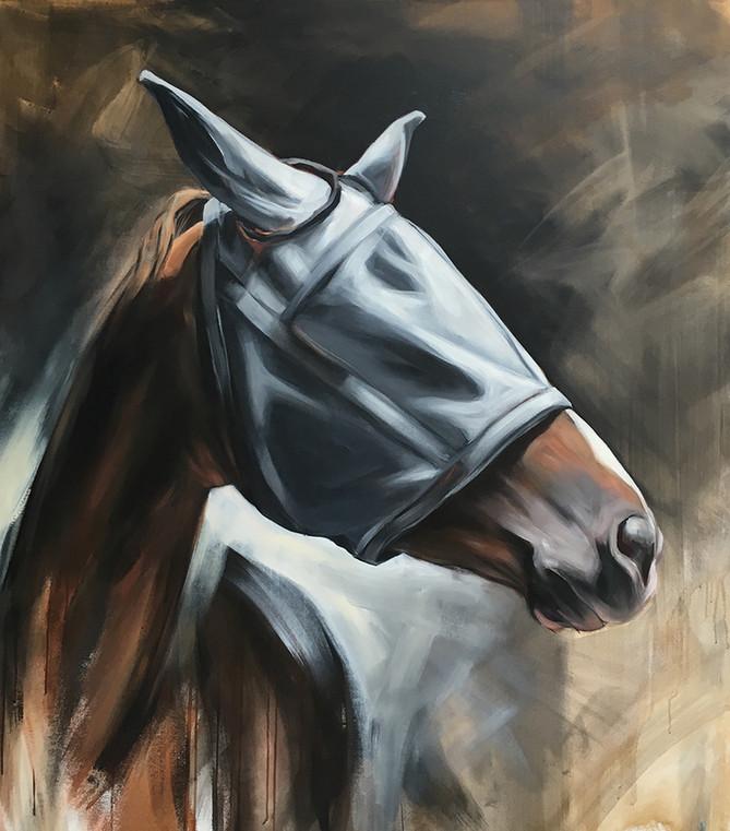Flymask Series Untitled 4 (Slate Grey Mask) _ 2016 _