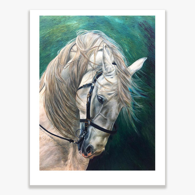 Centurion White Horse ltd Ed print