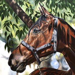 Horse Under Tree,