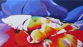 Echo of Flowers, Papaver variabilis 169