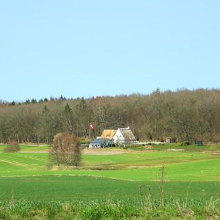 Danish farmhouse in the distance.jpg