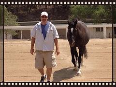 Ranch Day Facilitator, Chuck Wolf and Tuxedo, Leader Follower