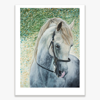 Spanish Horse Ltd  Ed print