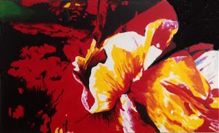 Echo of Flowers, Papaver variabilis 161