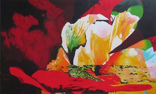 Echo of Flowers, Poppy variabilis 166