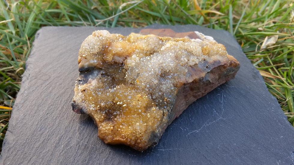 Scottish Golden Drusy Quartz Crystal