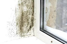 Mold in the home? Is it a health problem? Medical News Today explains
