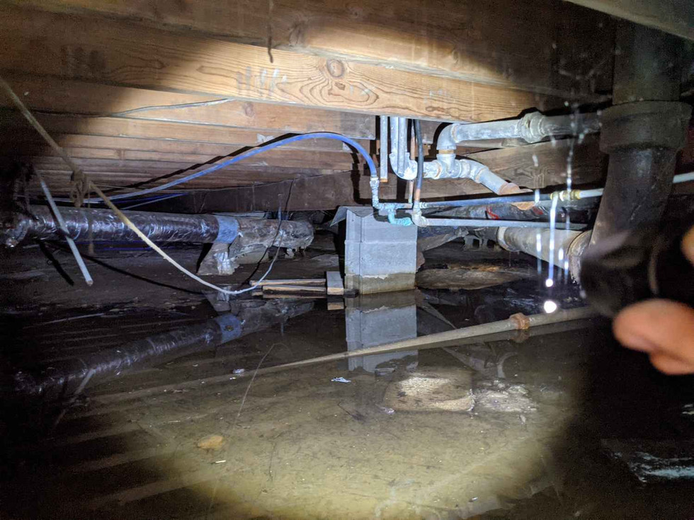 Top 3 Reasons Water in Your Crawl Space is BAD