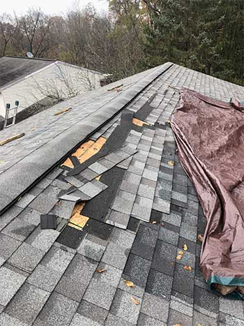 The Roof, The Roof, The Roof is... falling apart