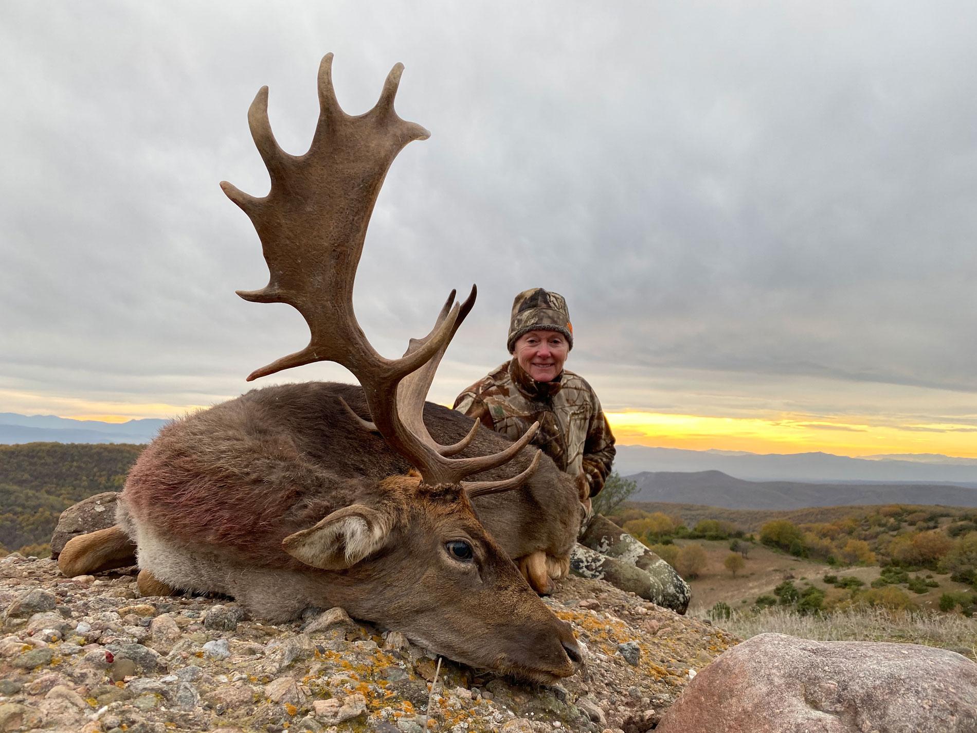 Fallow-Deer-2019