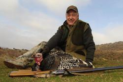 European Wild Turkey