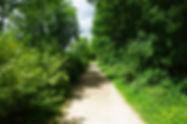 la voie verte au Piroué
