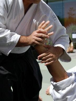 monroe karate