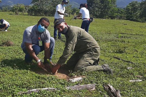 SENPA PARTICIPA EN JORNADA DE REFORESTACIÓN EN ARENOSO
