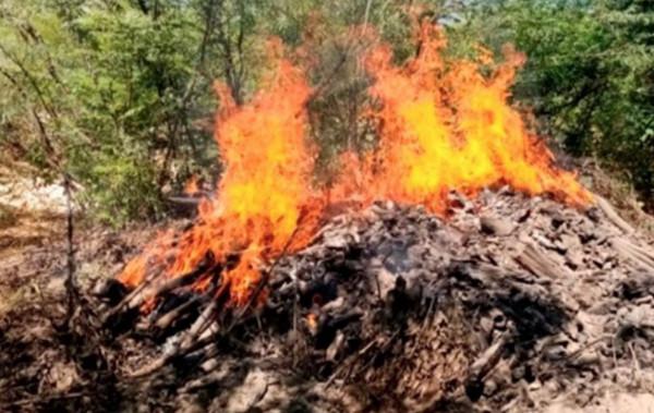 horno, carbón, senpa, medio_ambiente