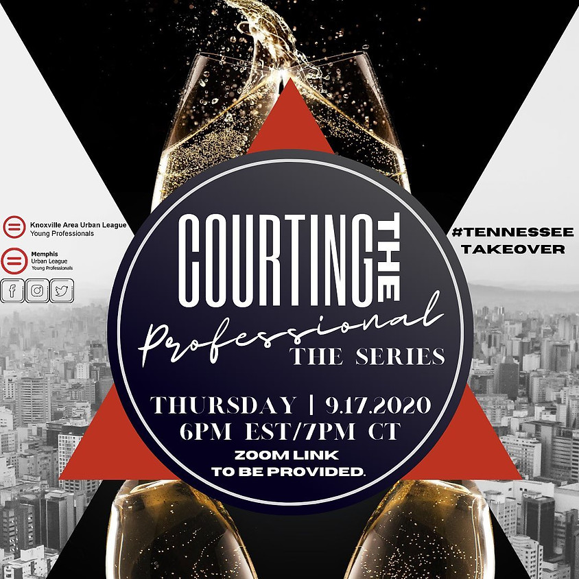 Courting The Professional: The Series