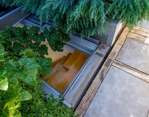 קטן מבט למדרגות מהגג צמחיה.jpg
