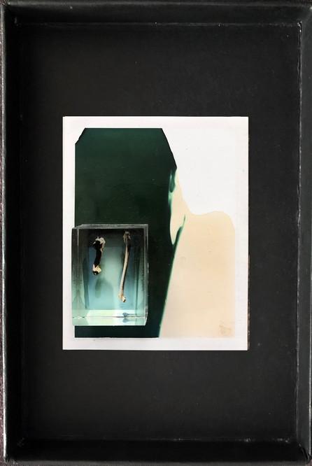 "Series X-Pola ""Bones"" 2019 8/10cm mounted Plexiglass on Polaroid Edition 1/1 NIS 1,000 per object Sold out"
