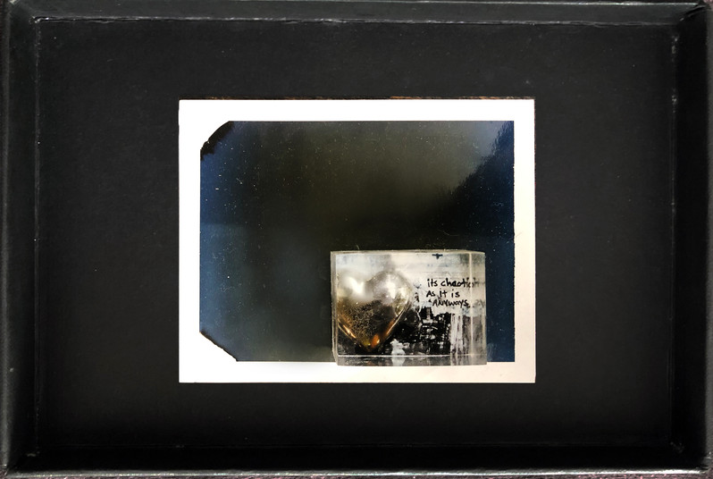 """Series X-Pola """"Wild at heart"""" 2019 8/10cm mounted Plexiglass on Polaroid Edition 1/1 NIS 1,000 per object Sold out"""