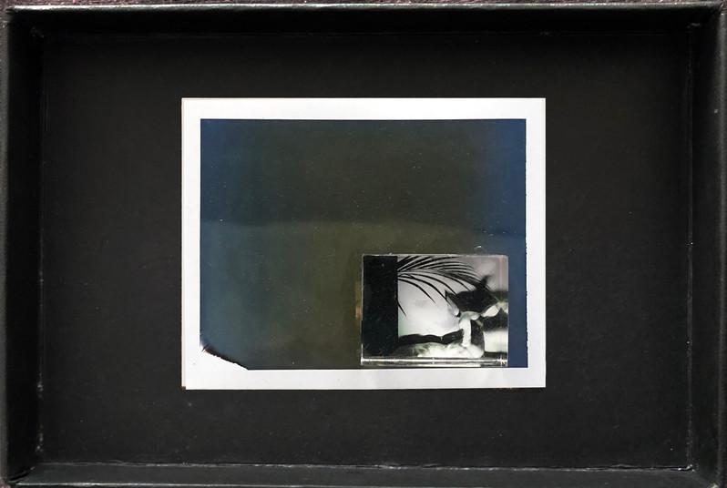 "Series X-Pola ""Bambi"" 2019 8/10cm mounted Plexiglass on Polaroid Edition 1/1 NIS 1,000 per object"