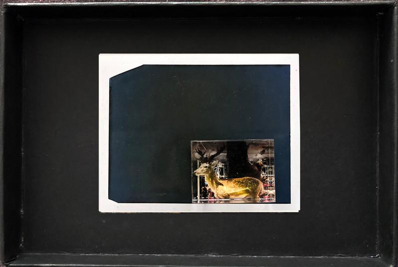 "Series X-Pola ""Oh dear"" 2019 8/10cm mounted Plexiglass on Polaroid Edition 1/1 NIS 1,000 per object"