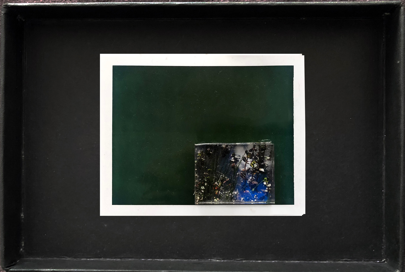 "Series X-Pola ""Nora's cat"" 2019 8/10cm mounted Plexiglass on Polaroid Edition 1/1 NIS 1,000 per object"