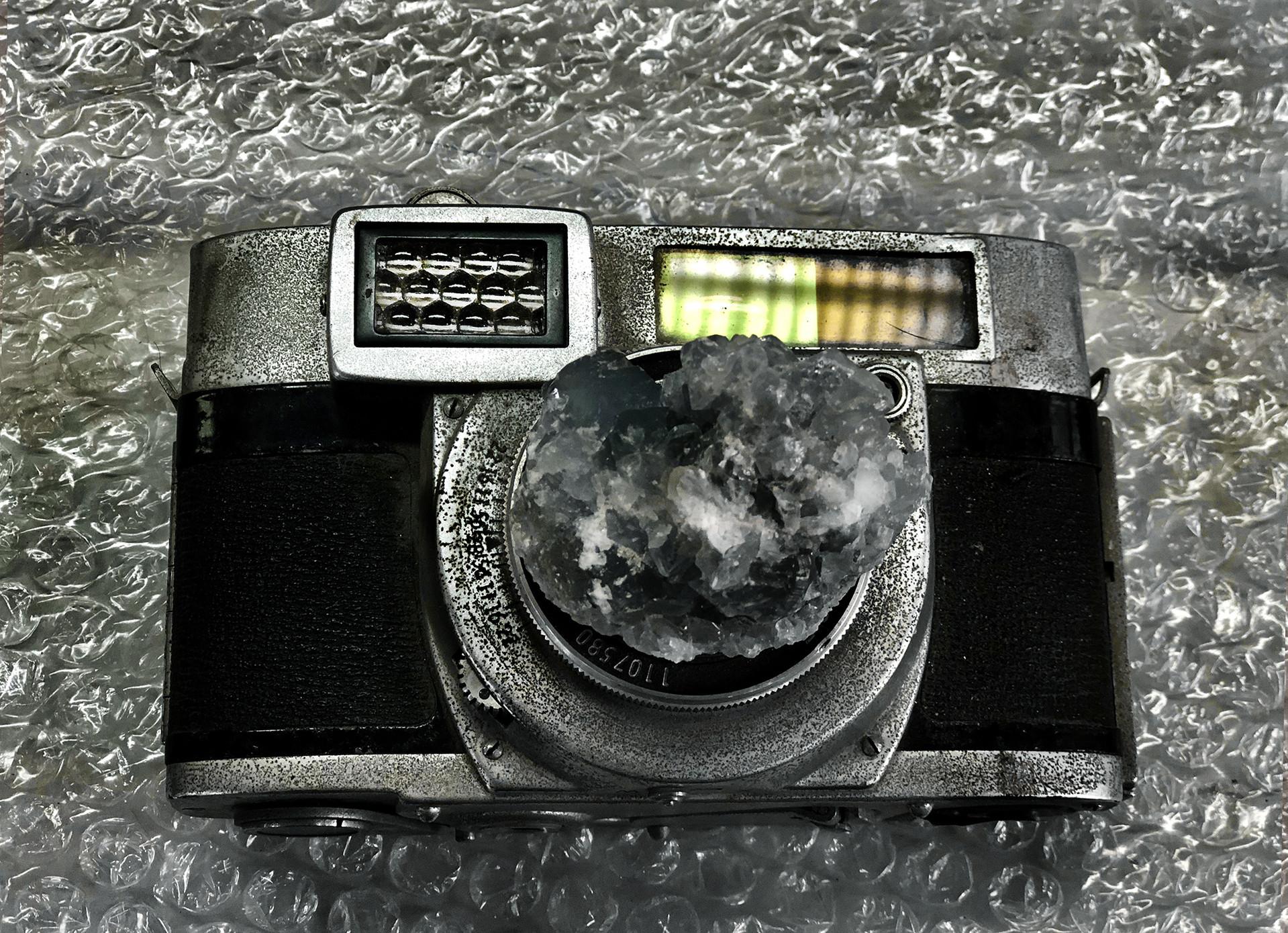 'fertelizing camera #1', 2018 50/70cm archival pigment print 2200$+vat edition 2/5 +2AP